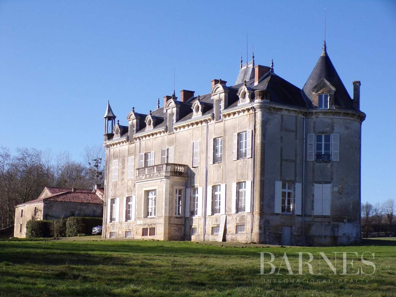 Fontenay-le-Comte  - Château 15 Pièces - picture 3