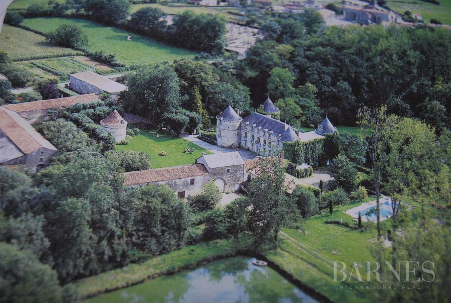 La Châtaigneraie  - Château 15 Pièces 9 Chambres - picture 2