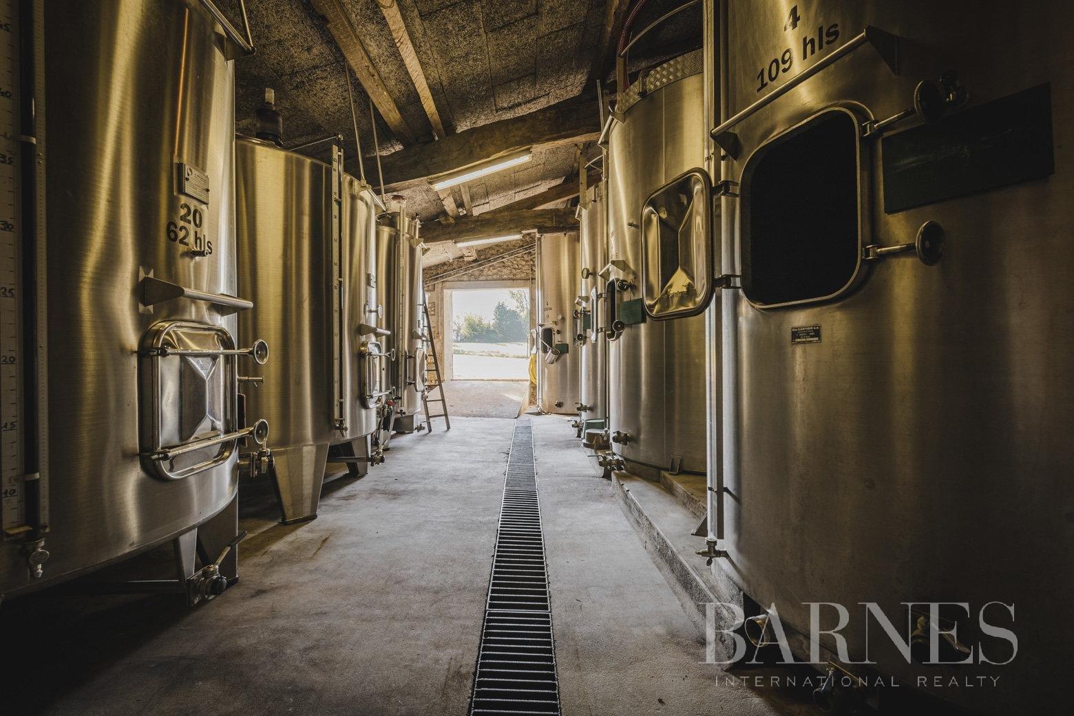 Bordeaux  - Propriété viticole 8 Pièces - picture 7