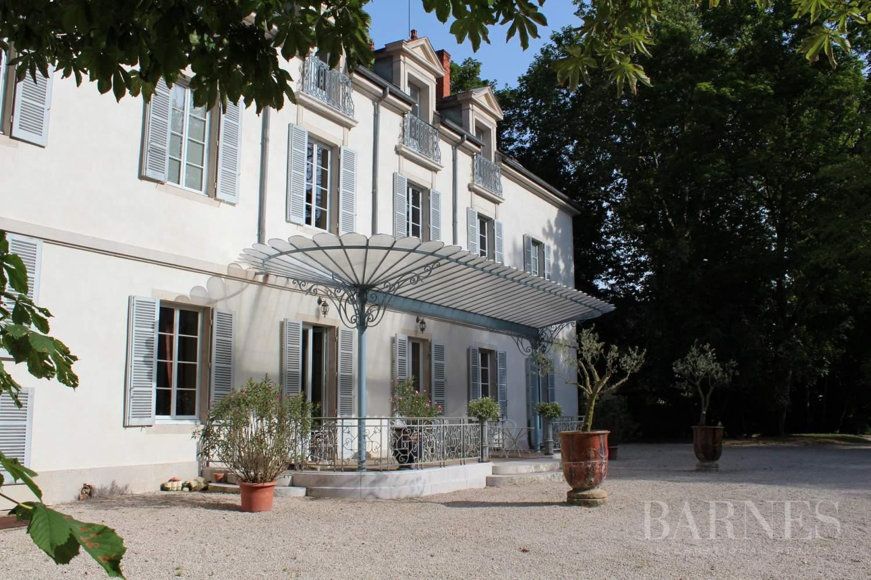 Beaune  - Château 22 Pièces 16 Chambres - picture 2