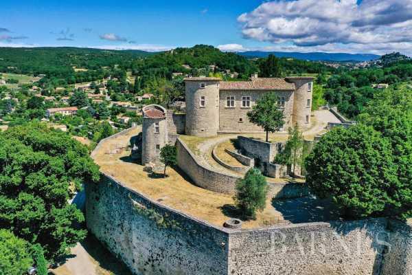 Château Mane  -  ref 5824965 (picture 2)