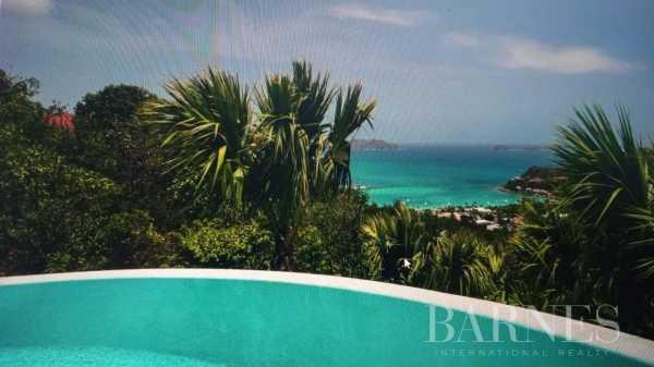 Villa Saint-Barthélemy  -  ref 5868516 (picture 3)