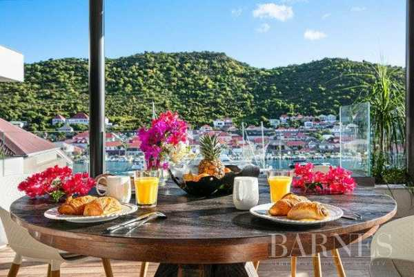 Apartment Saint-Barthélemy  -  ref 4810850 (picture 3)