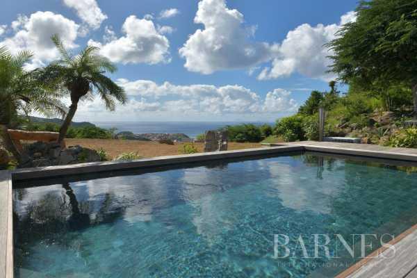 Villa Saint-Barthélemy  -  ref 4640589 (picture 3)