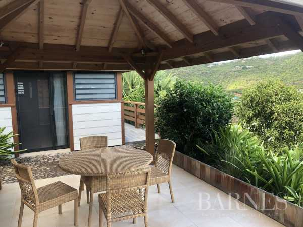 Apartment Saint-Barthélemy  -  ref 3722685 (picture 1)
