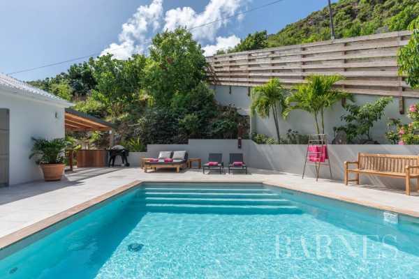 Villa Saint-Barthélemy  -  ref 5304355 (picture 2)