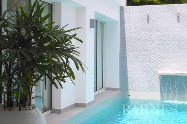Apartment Saint-Barthélemy  -  ref 5296917 (picture 2)