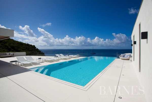 Villa Saint-Barthélemy  -  ref 3324860 (picture 2)