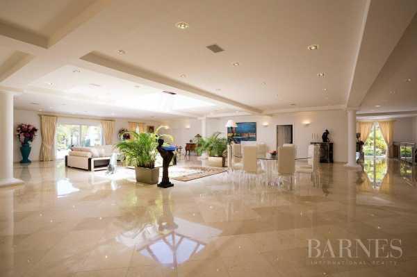 Villa Saint-Barthélemy  -  ref 3387414 (picture 2)