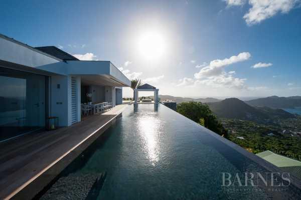 Villa Saint-Barth�lemy  -  ref 3324798 (picture 3)