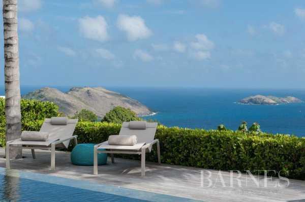 Villa Saint-Barthélemy  -  ref 3381647 (picture 2)