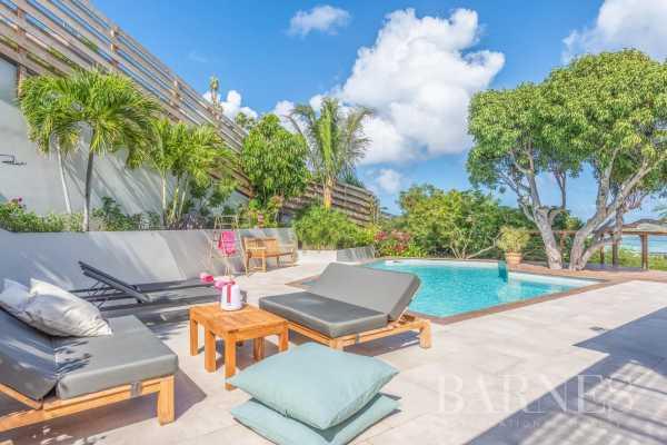 Villa Saint-Barthélemy  -  ref 5304355 (picture 3)