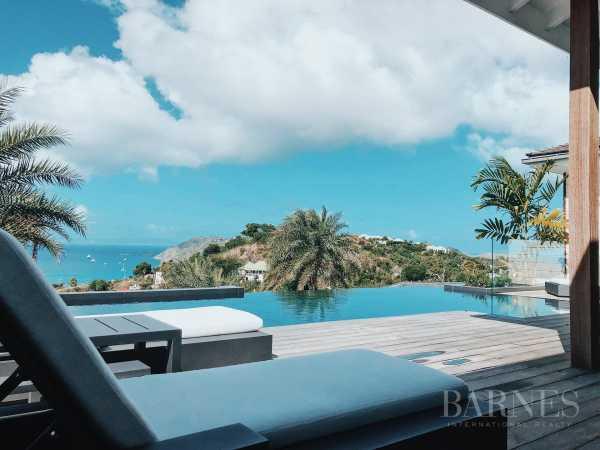 Villa Saint-Barthélemy  -  ref 3511467 (picture 2)
