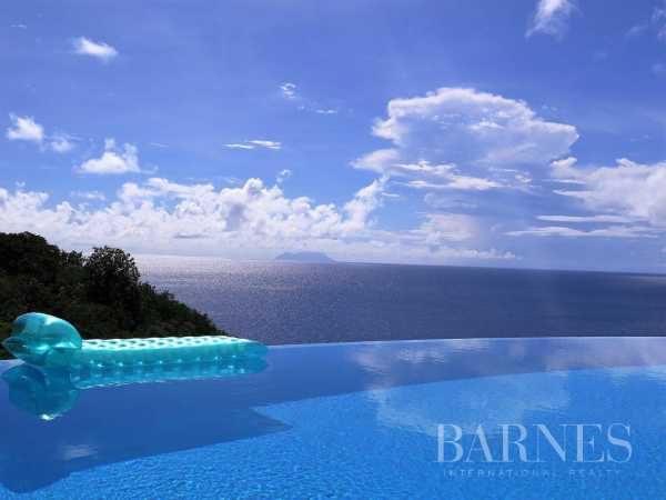 Villa Saint-Barthélemy  -  ref 3324811 (picture 2)