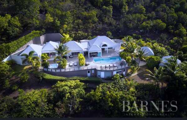 Villa Saint-Barthélemy  -  ref 5908371 (picture 1)