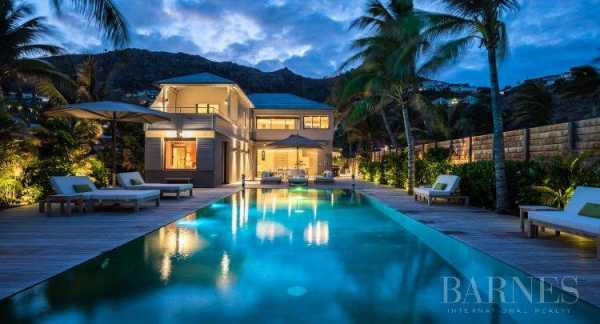 Villa Saint-Barth�lemy  -  ref 3410842 (picture 1)