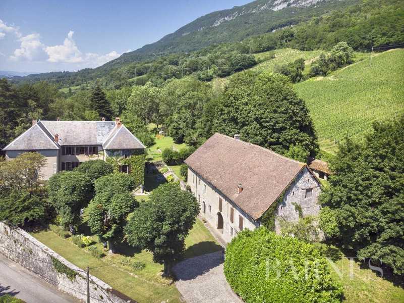 Serrières-en-Chautagne  - Château 25 Pièces