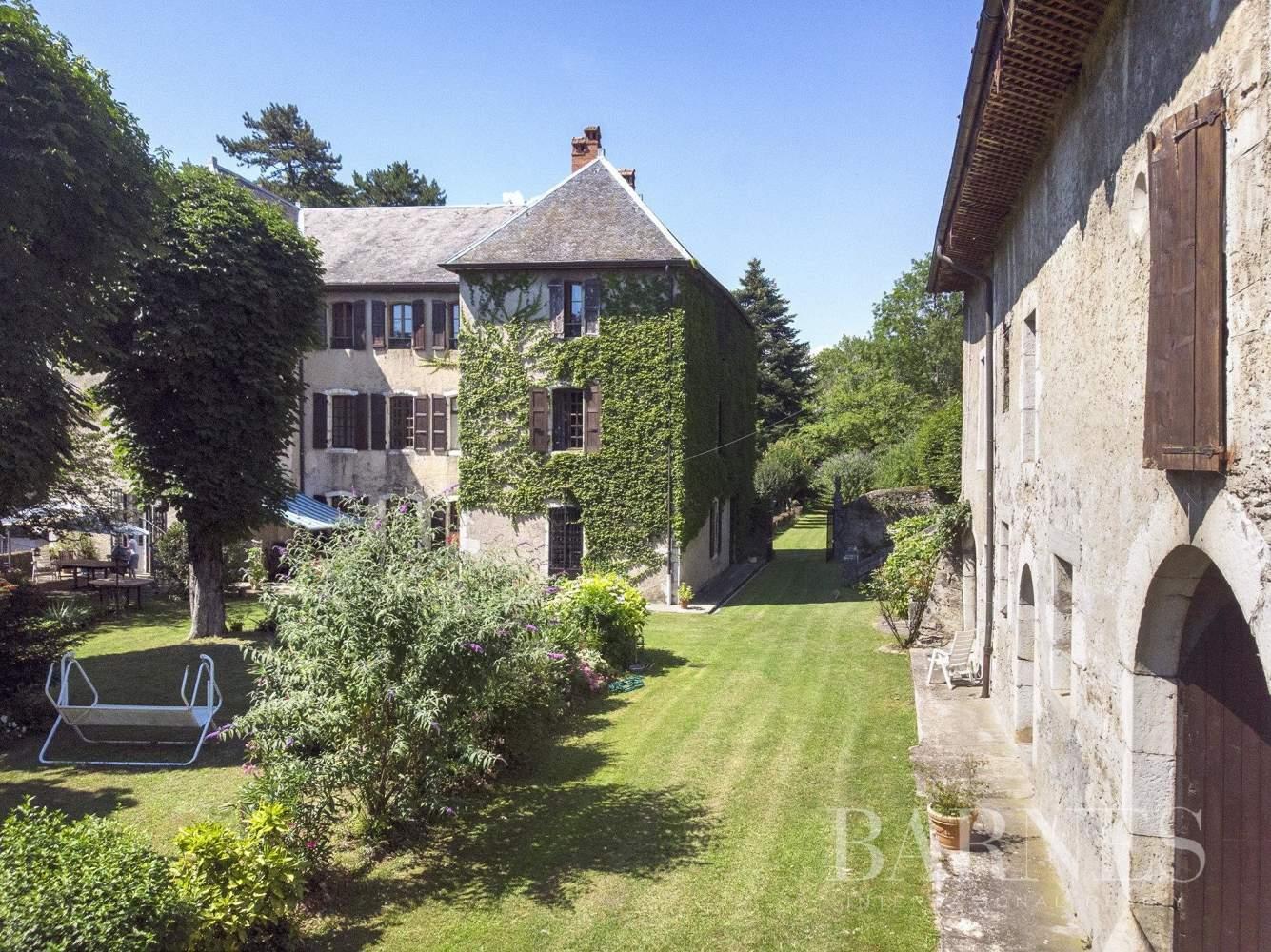 Serrières-en-Chautagne  - Château 25 Pièces - picture 4