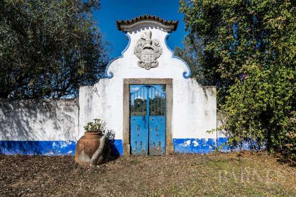 Casa, Montemor-O-Novo - Ref 3352747