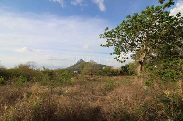 Residential land Petite Rivière Noire  -  ref 5282526 (picture 2)