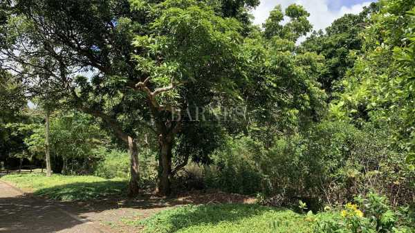 Residential land Constance  -  ref 6090531 (picture 3)