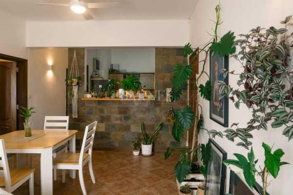 Apartment Curepipe  -  ref 5652669 (picture 3)