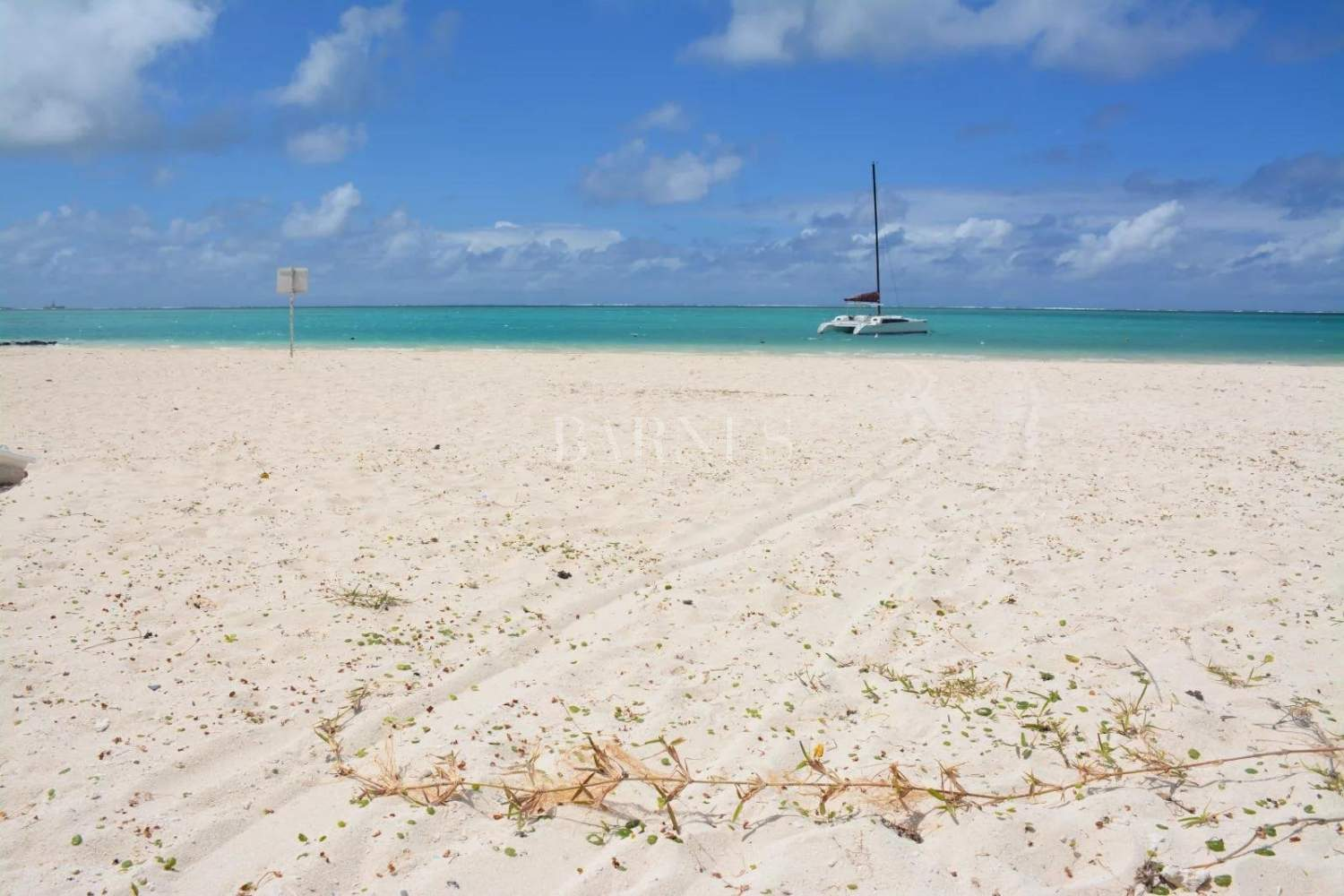 Pointe d'Esny  - Apartment 3 Bedrooms - picture 1