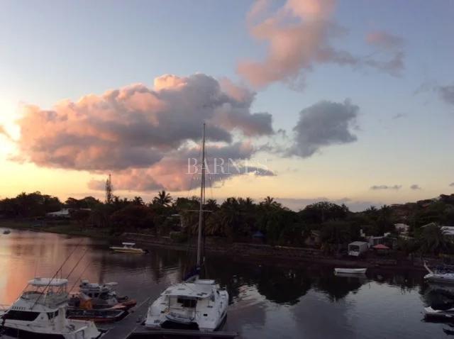 Rivière Noire  - Penthouse  - picture 9