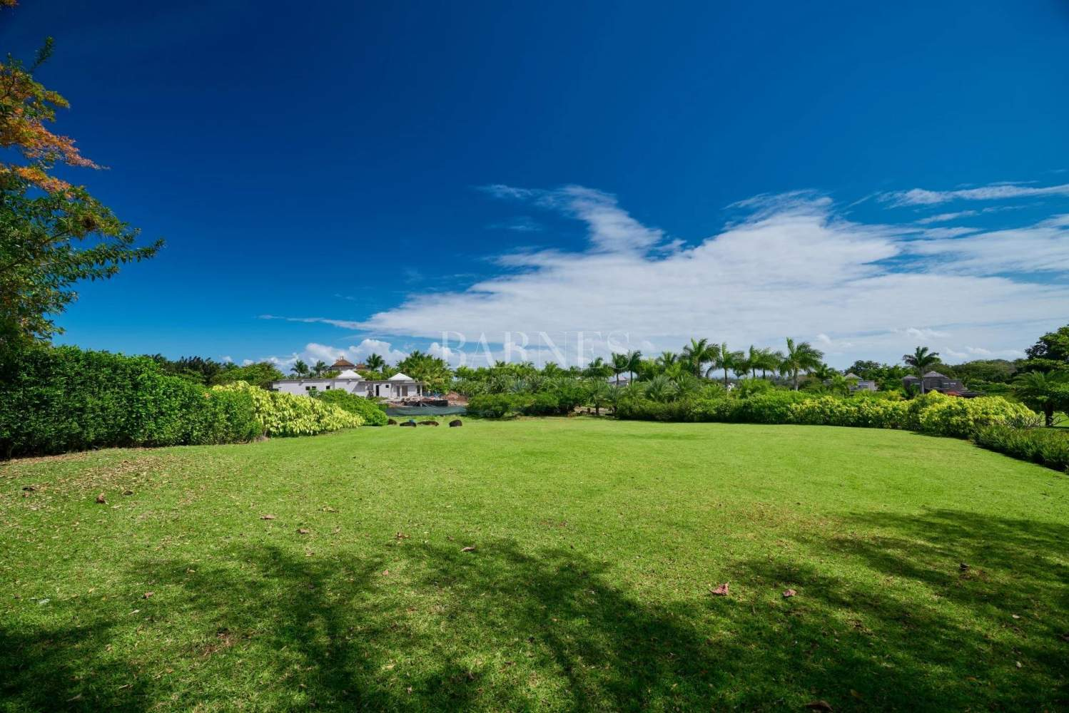 Bel Ombre  - Residential land  - picture 3