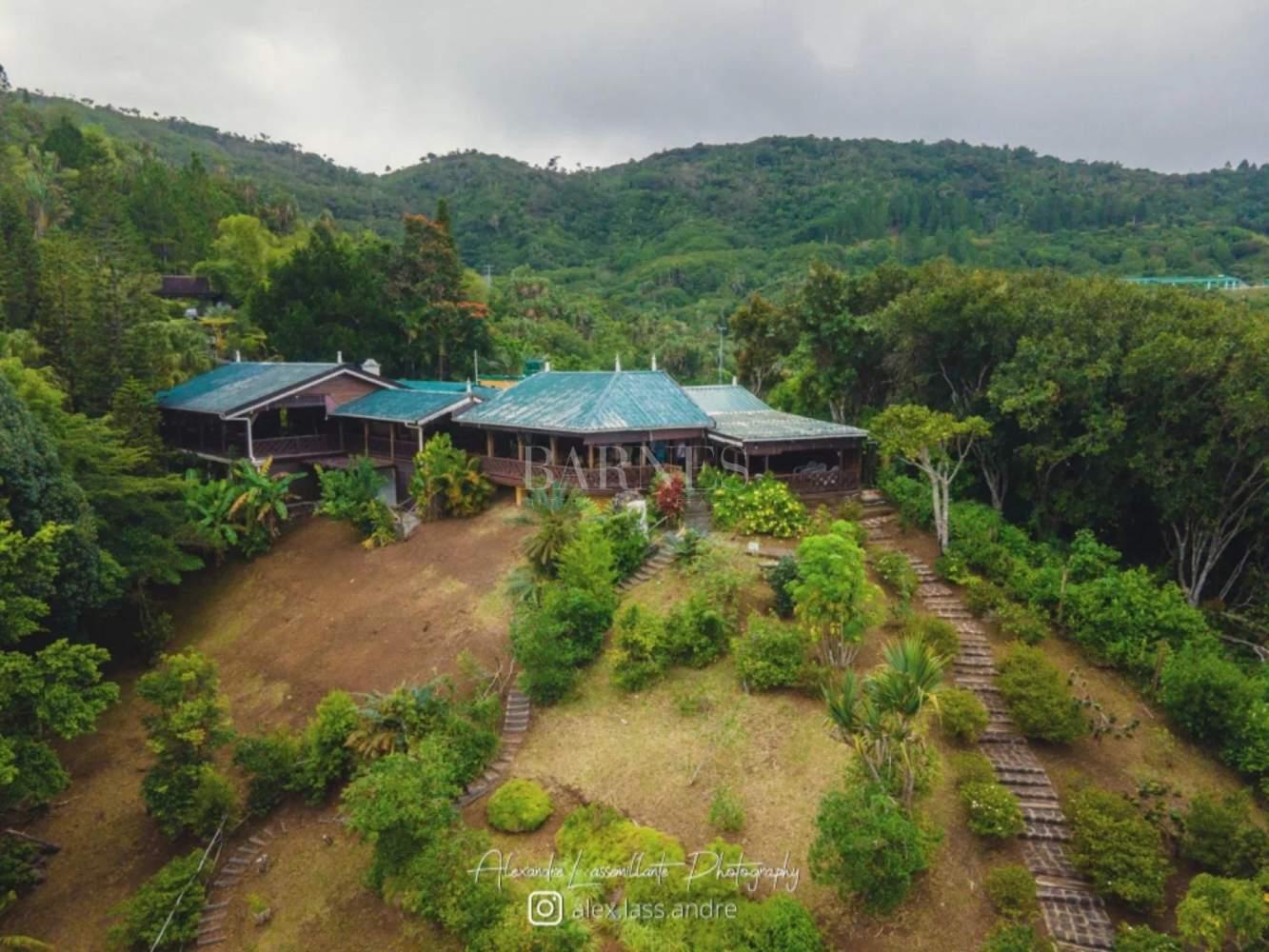 Chamarel  - Villa  - picture 4