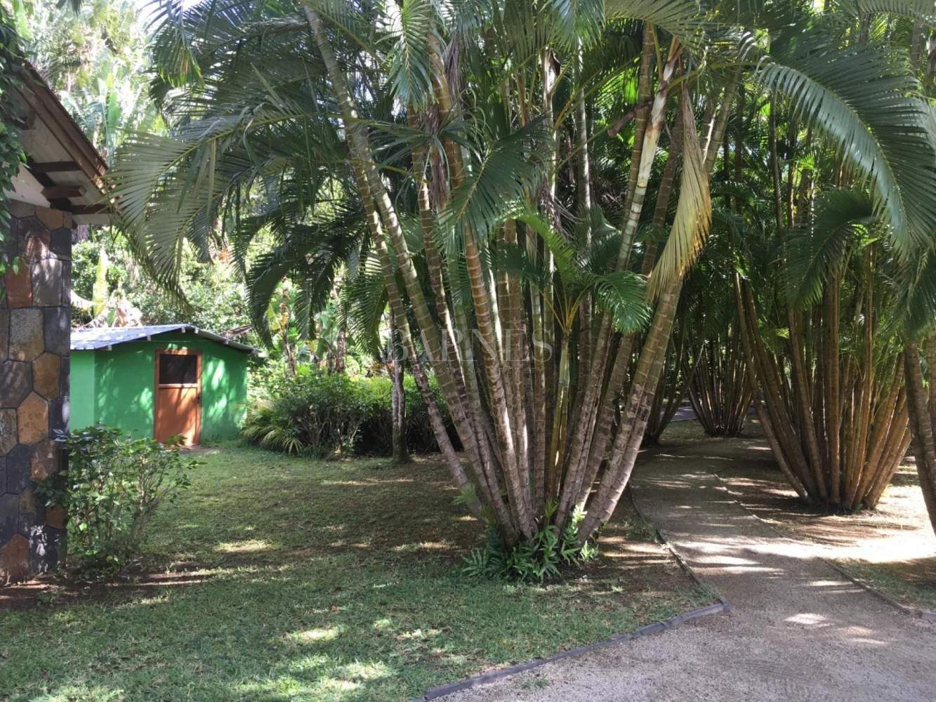 Anse Jonchée  - House 4 Bedrooms - picture 12