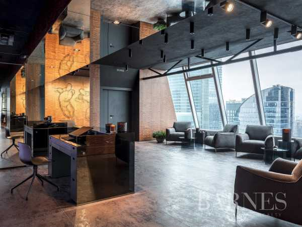 Penthouse Moscow  -  ref 4841343 (picture 1)